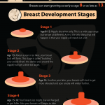All About Breast and Bra Sizes