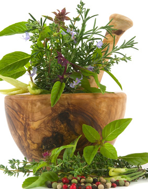 Herbal Remedies for HPV