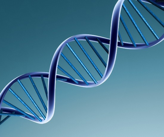 need to know about paternity testing