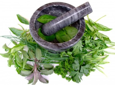 herbal remedies for early abortion