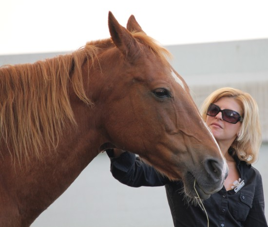 horses can help you heal from addiction